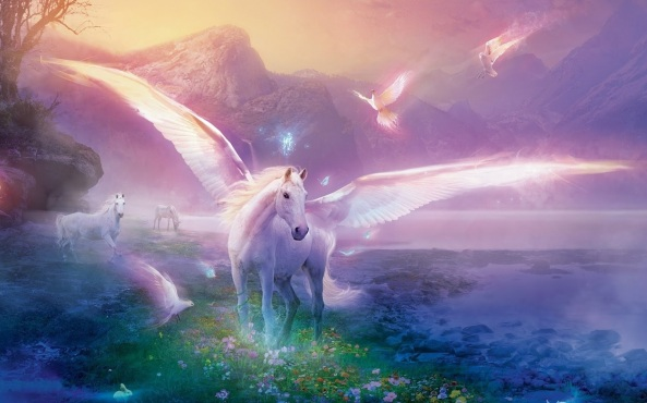 animal-exciting-unicorn-wallpaper-widescreen-hd-wallpapers